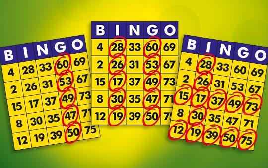 Bingo Spielregeln Einfach