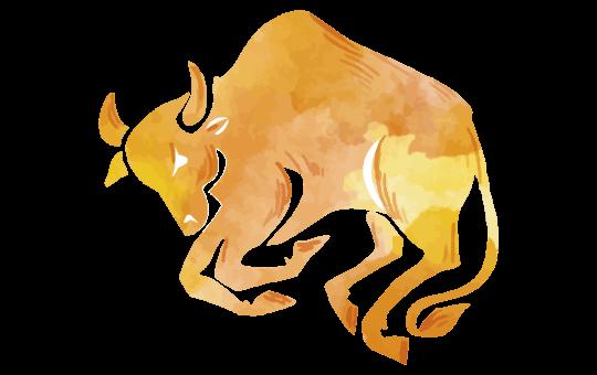 Glückszahlen Stier